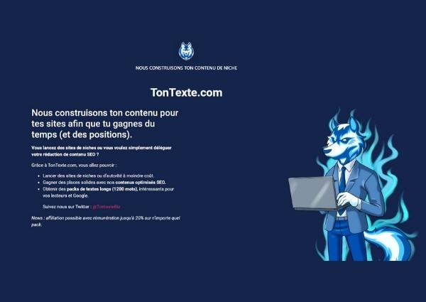 tontexte.com redaction web